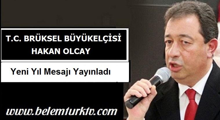 Büyükelçi Hakan Olcay'ın Belçika'daki Türk toplumunu muhatap yeni yıl mesajı