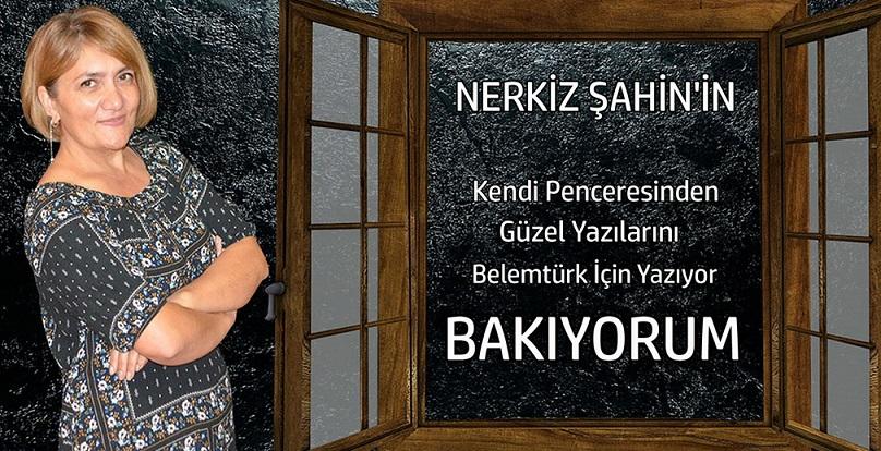 """Nerkiz Şahin'in  Güzel Penceresinden """" Bakıyorum """""""