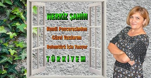 """Nerkiz Şahin'in Penceresinden """" T Ü R K İ Y E M """""""
