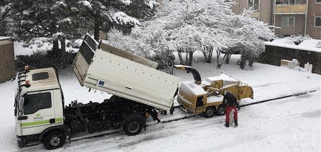 Almanya'da Kar Yağışı Hayatı Olumsuz Etkiliyor