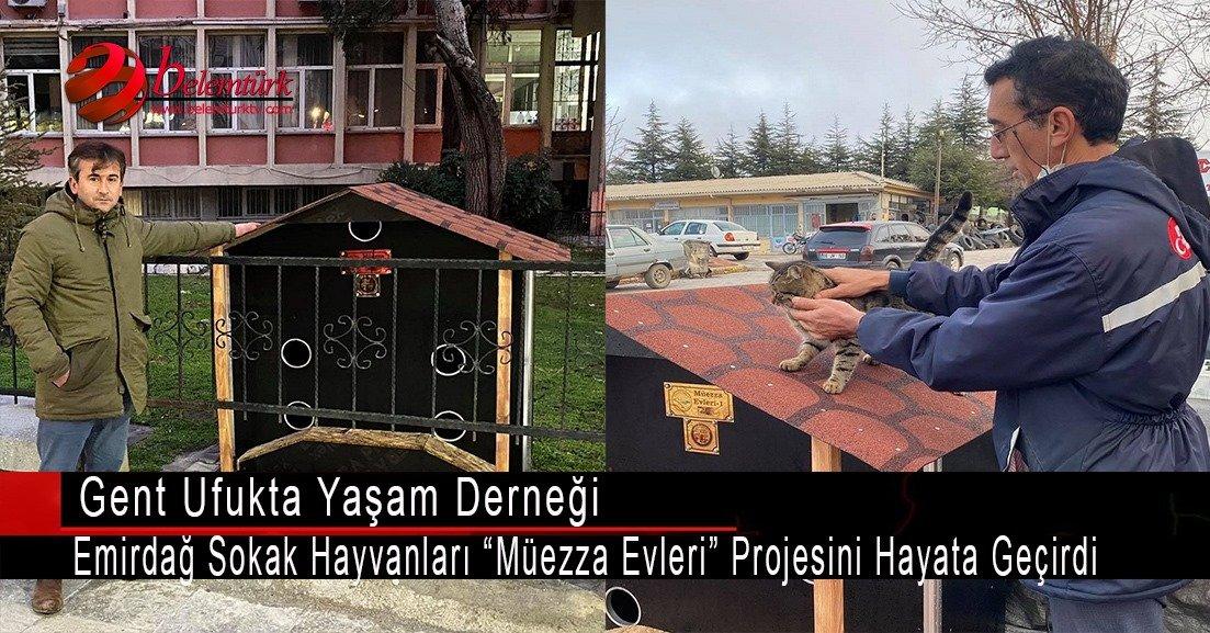 """Ufukta Yaşam Derneği, Emirdağ sokak hayvanları """"Müezza Evleri"""" projesini hayata geçirdi."""
